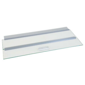 "Glass Canopy set - 20"" x 10"""