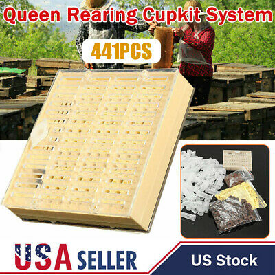 441pcs Queen Rearing Cupkit System Bee Beekeeping Catcher Box Cell Cups Tool Kit