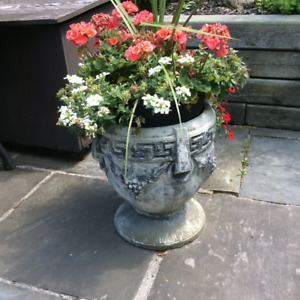 Elegant cement planters with beautiful flowers