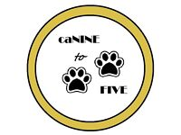 CaNINE to FIVE Dog Walking & Sitting ... Tailored to suit your dogs needs !!