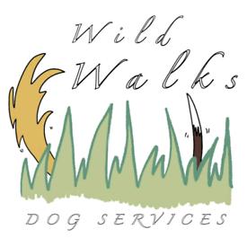 Dog walker - Caerphilly