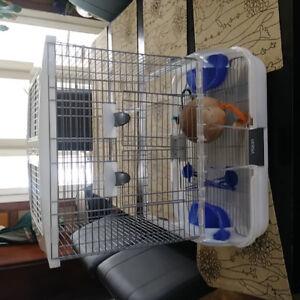 Cage oiseaux avec accessoires 50$