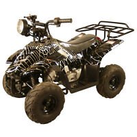 Childs Toy 4 Wheeler 110cc 10 colours, Speed Limiter, New 2WD