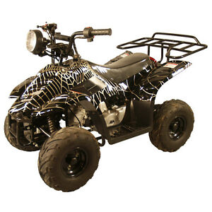 Childs Toy 4 Wheeler 110cc  Speed Limiter, New 2WD IN THE BOX SA