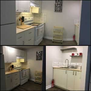 All Incl. 1 Room for Rent in a 2 Bedroom Basement Apt