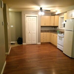 2 Bedroom Walk-Out Basement Apartment