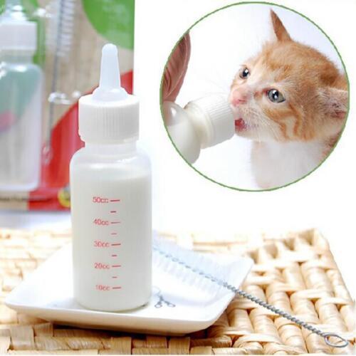 Pet Dog Cat Kitten Baby Feeding Nursing Bottle  Slicone  Fee