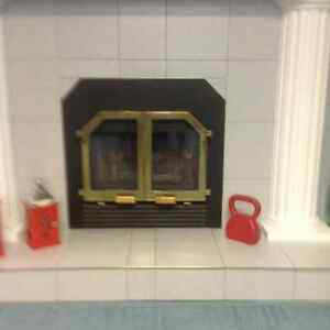 Bis fire place for sale