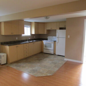 Clarenville Large Modern 1 Bedroom Apartment