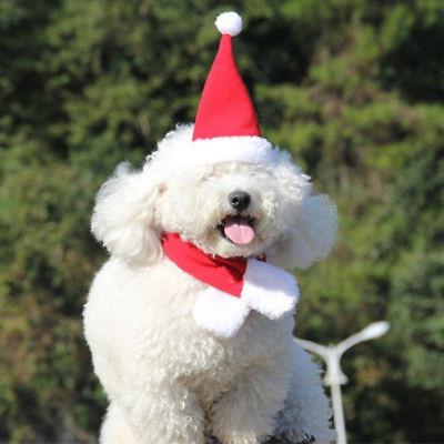Haustier Katze Hund Hut Schal Weihnachten Urlaub Kostüm Welpen Tiere Kleidung