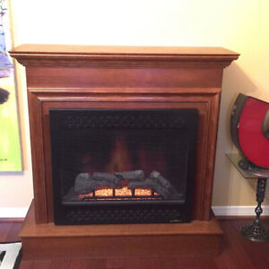 Heat and Glo Electric Fireplace