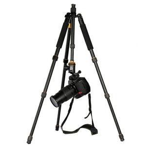 Q-999 + QZSD-06 Ball Head Photo Tripod / Monopod