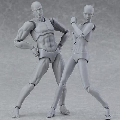 US She//he S.H.Figuarts SHF Body Kun SET Body-Chan DX SET Action Figure PVCIn Box