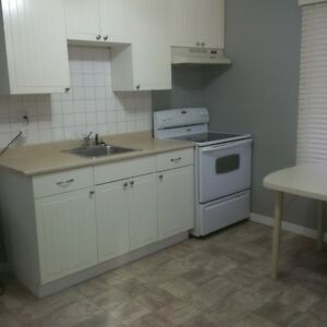 Recently renovated SK house for rent