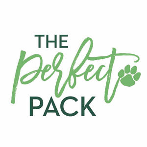 The Perfect Pack Dog Walking