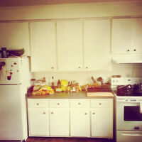 housekeeping/private chef services! montreal area 16$/hour