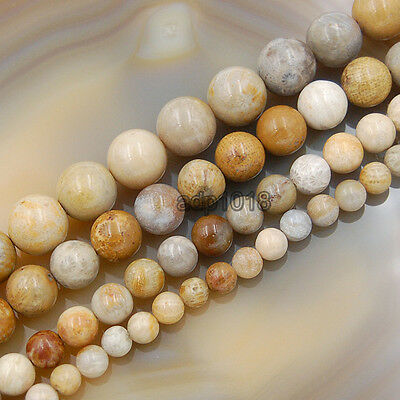 Natural Yellow Coral Fossil Gemstones Round Spacer Beads 15