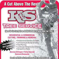COMPLETE TREE CUTTING SERVICES 24 HOURS