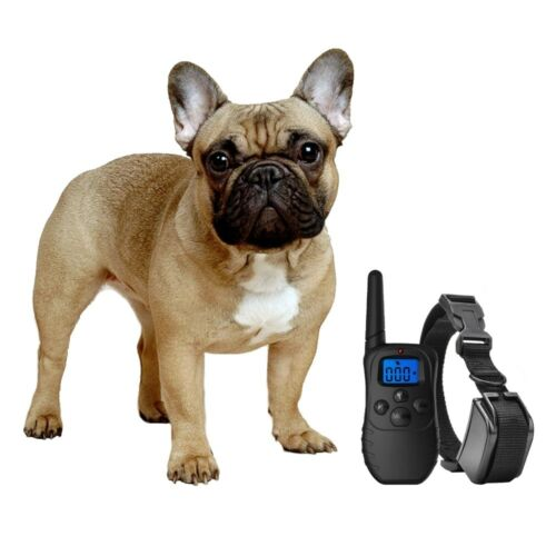 Shock Collar For Small Dogs W/Remote + Free Trainingclicker- 3 Mode Dog Training