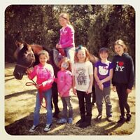 Birthday Party Pony Rides We Come To You 416-931-5437