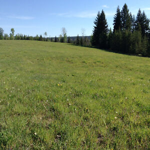 Property for sale Prince George British Columbia image 7