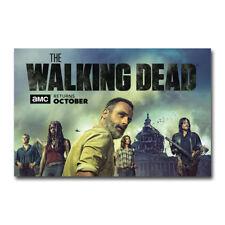 T-732 Art Poster The Walking Dead TV Series US TV Series Daryl Rick Silk Print