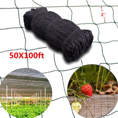 100x50 Anti Bird Baseball Poultry Soccer Game Fish Netting 2 Mesh Holes