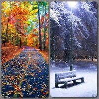 BOOKING FALL CLEAN UP & SNOW REMOVAL 902-401-0133