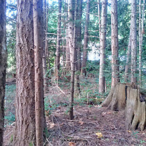 Ship's Point lot .52 acres wooded