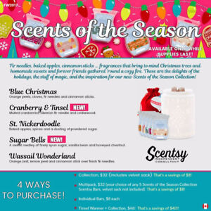 Scnetsy products