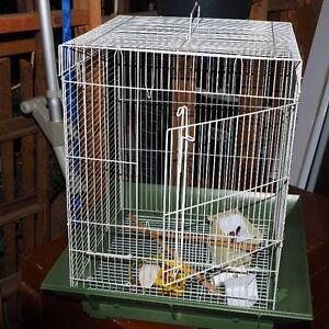Bird Cage, mediun size, very clean