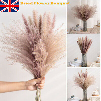 Home Decoration - Large Natural Dried Pampas Grass Reed Home Wedding Flower Bunch Decor Set HOT