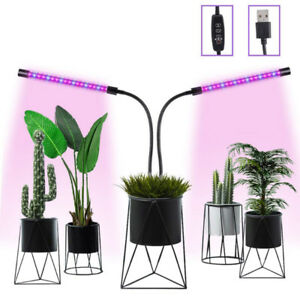 Grow Lights for Indoor Plants 3/9/12 H Timing Switch, 6 Dimmable