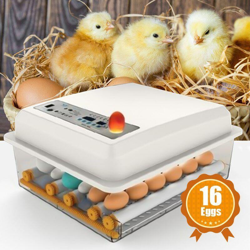 Egg Incubator Brooder Bird Quail Poultry Hatcher Turner Automatic Farm Tool