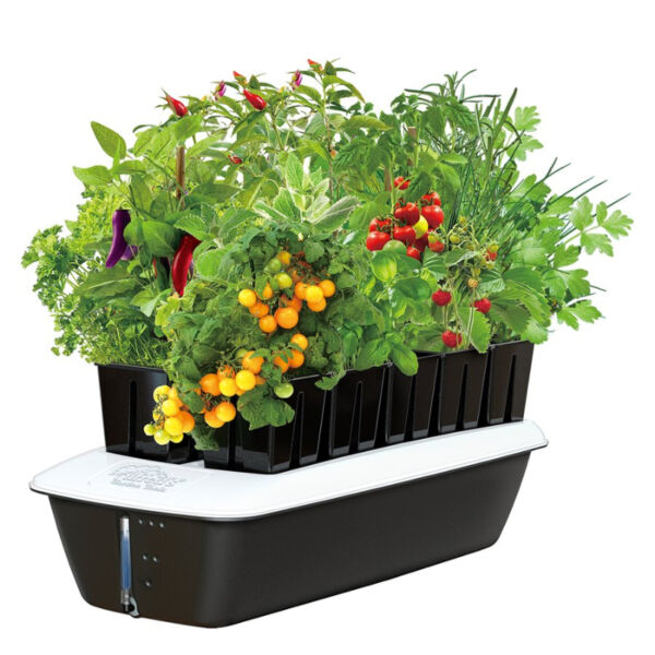 Indoor plant supplies hydroponic plant fertilizer and for Indoor gardening nutrients