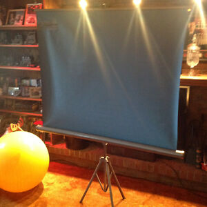 Projection Screen Windsor Region Ontario image 2