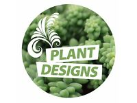 Flowering Plant Display Producer
