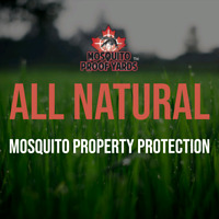Mosquito business looking for local rep