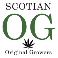 Looking for growers and cannabis investors