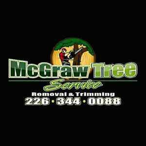 Tree Removal and Trimming at a Great Price!!
