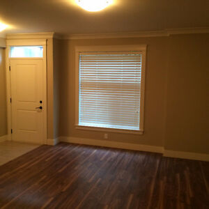 650ft2 - 2 year new basement for rent $1400 / 2br -