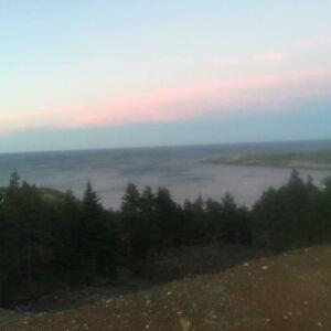 Land for sale in Flatrock