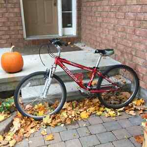 Giant Youth Bicycle