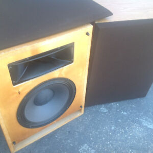 Vintage Commercial Yorkville RW112 Speakers