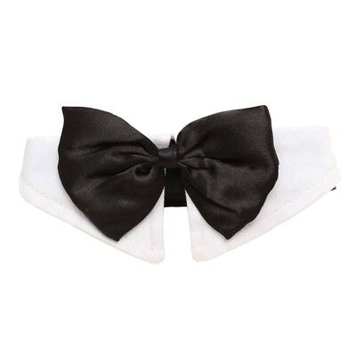 Unique Adjustable Dog Pet Bow Tie Collar Wedding Tuxedo Fancy Dress Costume W5D2 - Unique Dog Costumes