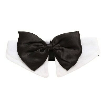 Unique Adjustable Dog Pet Bow Tie Collar Wedding Tuxedo Fancy Dress Costume W5D2 - Unique Dog Costume