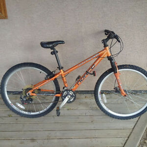 Norco Mountaineer Kids Mountain Bike