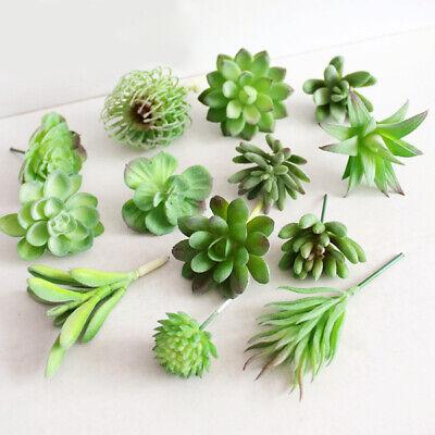 Succulent Pflanze Kaktus Echeveria Blume Heim/Büro Dekor (Kaktus Dekor)