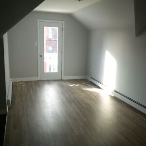 Newly Renovated Downtown 2 Bedroom Apartment