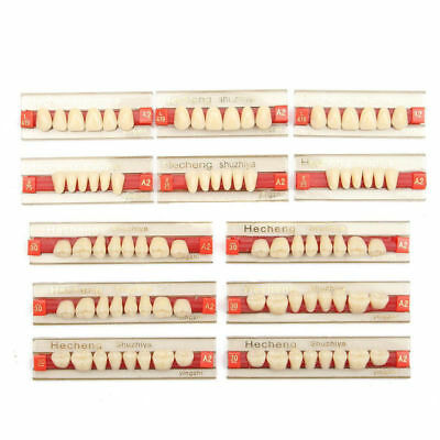 3 Set Of 841 Acrylic Resin Denture Teeth Vita Upper Lower Dental Shade Color A2